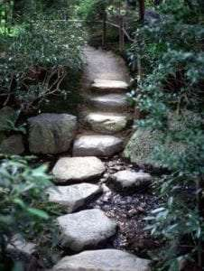 A path of rocks leading into the woods, representing a journey.